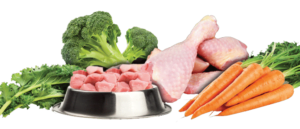 raw diet for puppies UK