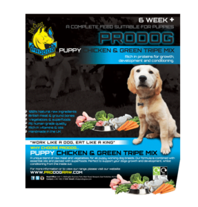 best raw diet for dogs UK
