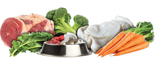 Natural Dog Food Diet