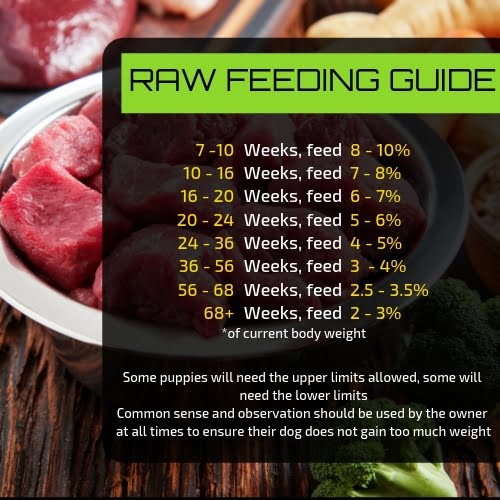 raw dog food feeding guide