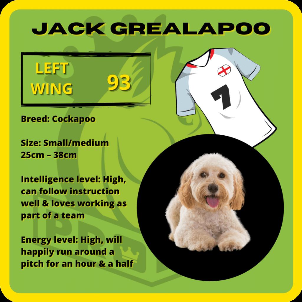 Jack Grealapoo