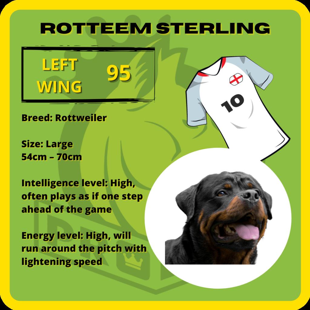 Rotteem Sterling