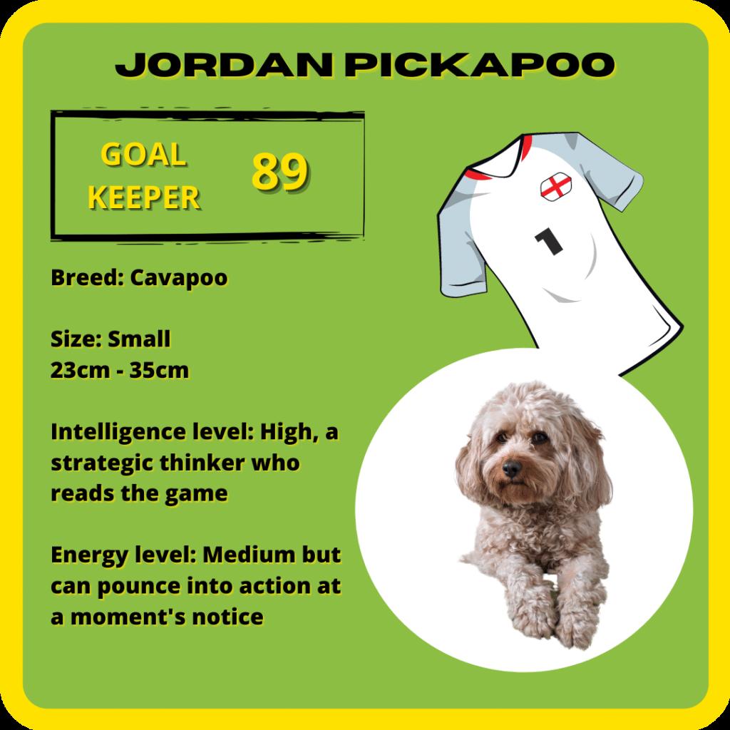 Jordan Pickapoo