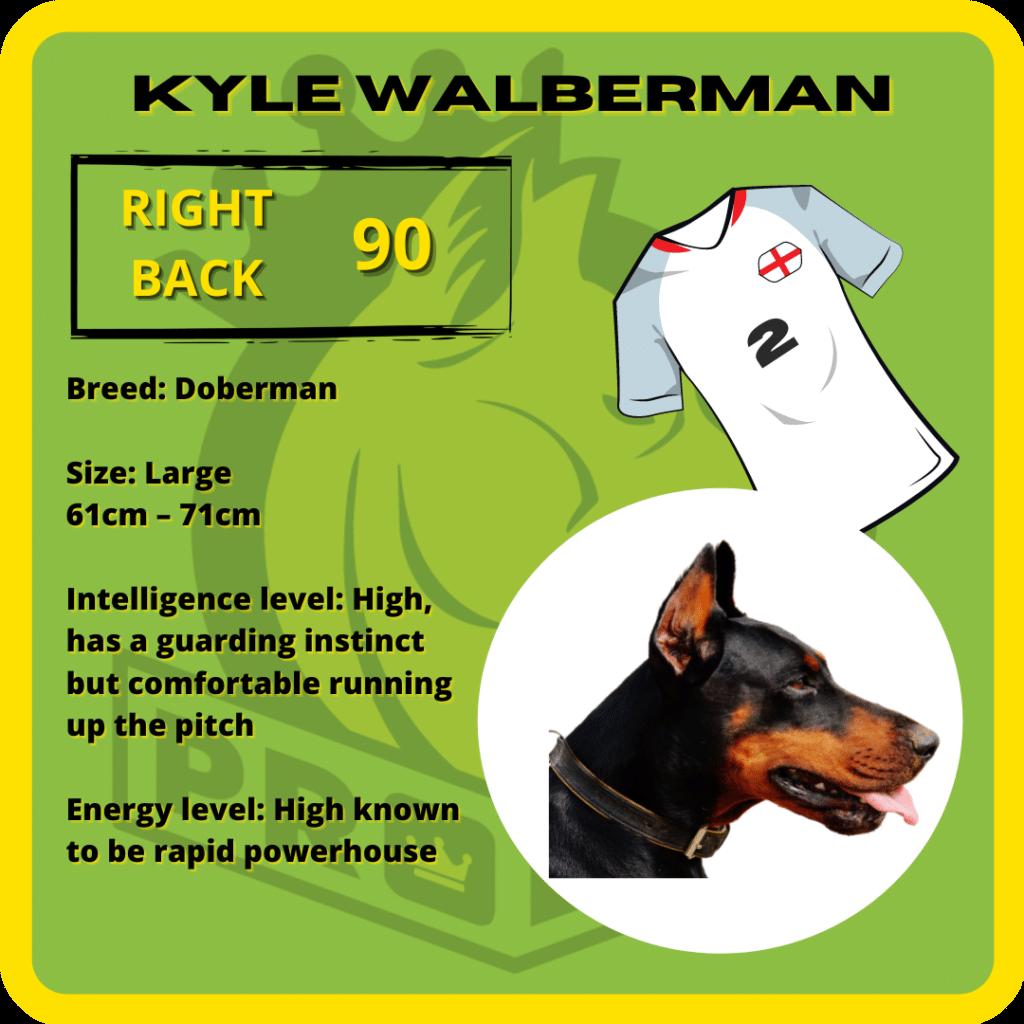 Kyle Walberman