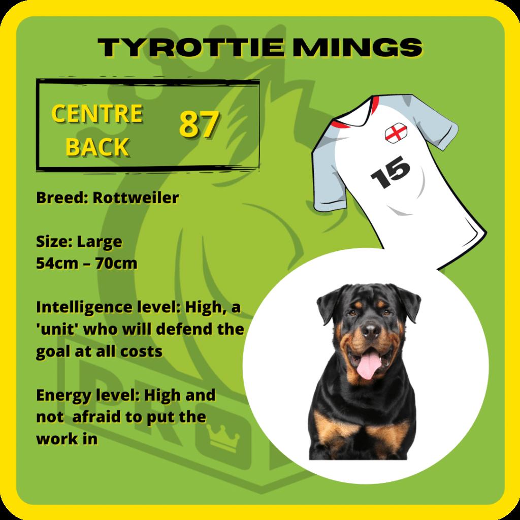 Tyrottie Mings